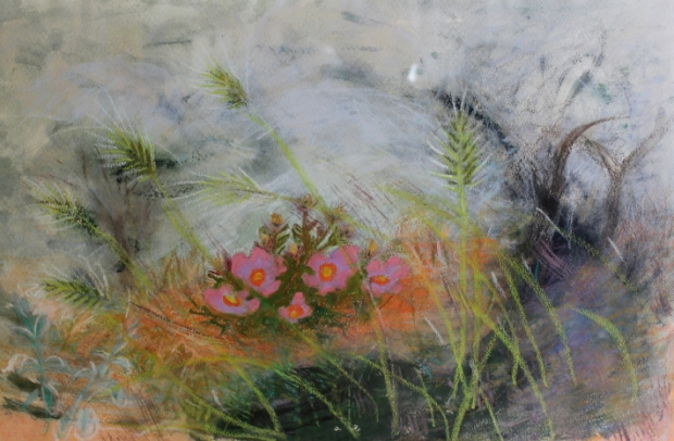 Nest of Rock Roses 1967 - Viewing by appointment only please by Winifred Nicholson
